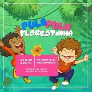 PULA-PULA-FLORESTINHA
