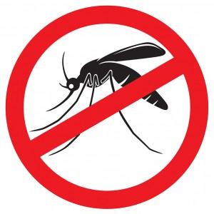 Campanha contra o Aedes