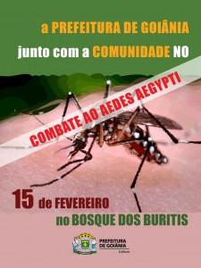 e-flyer_Aedes